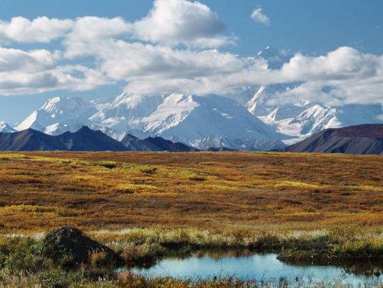 charles-sleicher-tundra-west-of-the-eieson-visitors-center-pond-with-beaver-house-mt-denali-alaska-usa