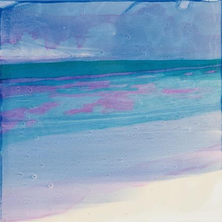 charlotte-johnstone-turtle-beach-2000
