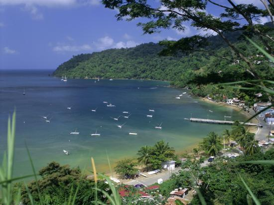 charlotteville-tobago-trinidad-and-tobago-caribbean-west-indies-central-america