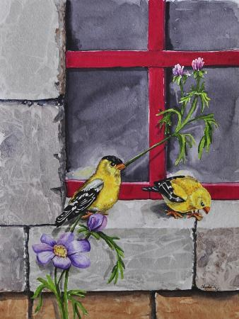 charlsie-kelly-gold-finches