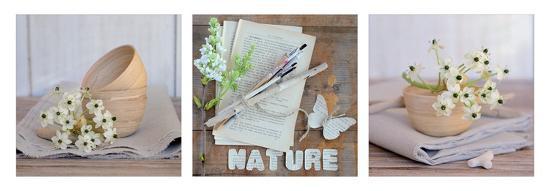 chatelain-fleurs-et-nature