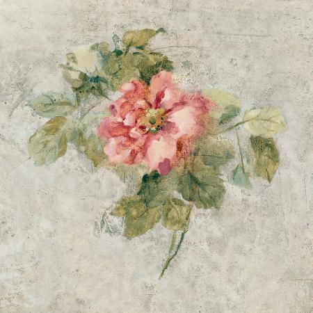 cheri-blum-provence-rose-ii-red-and-neutral