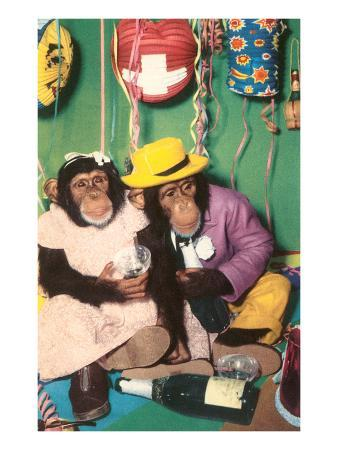 chimpanzees-in-party-mode