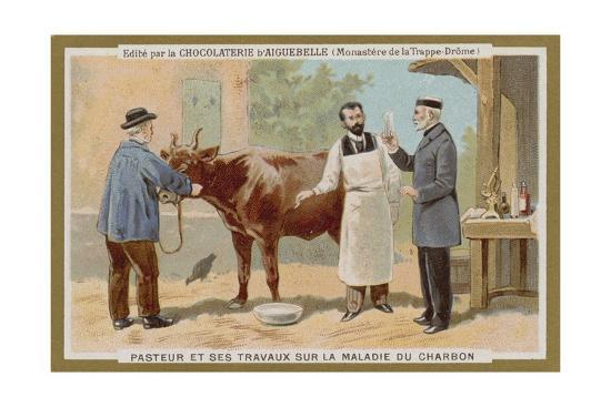 chocolat-d-aiguebelle-trade-card