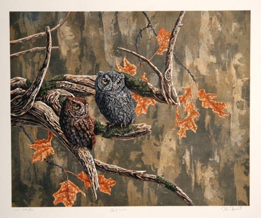 chris-forrest-owl-haven