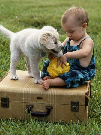 chris-lowe-baby-girl-playing-with-puppy