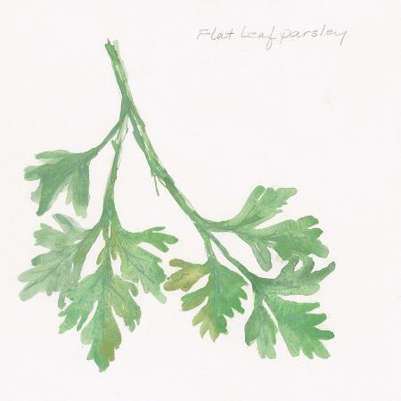 chris-paschke-flat-leaf-parsley