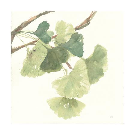 chris-paschke-gingko-leaves-i-light