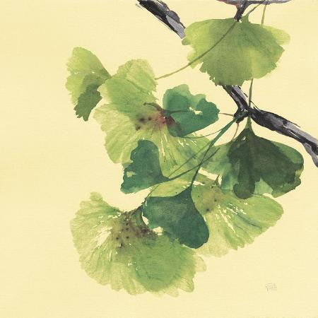 chris-paschke-gingko-leaves-ii-dark