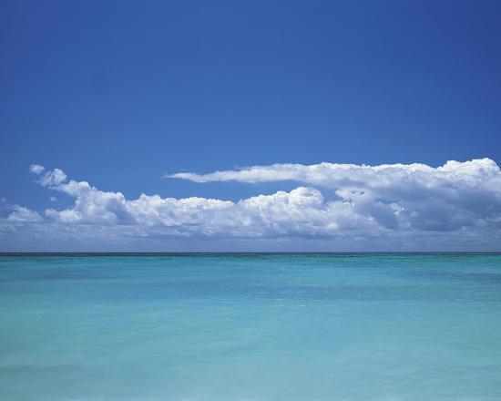 chris-simpson-paradise-dreaming
