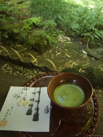 christian-kober-tea-ceremony-in-bamboo-forest-kamakura-city-kanagawa-prefecture-japan-asia