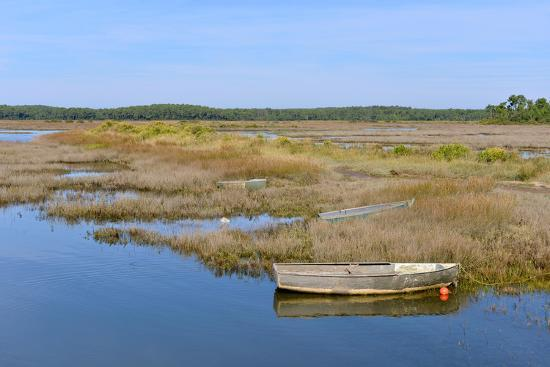 christian-musat-marshes-in-the-bay-of-arcachon