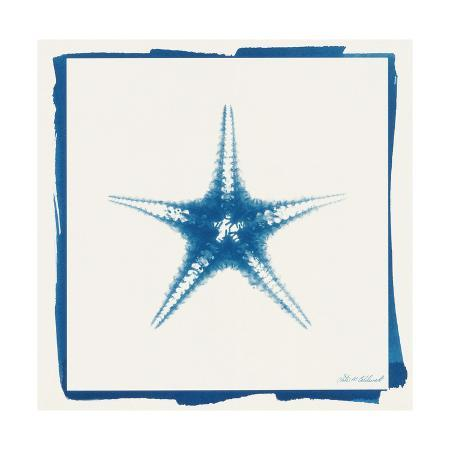 christine-caldwell-cyan-starfish
