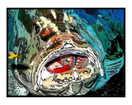christophe-jean-louis-eberhardt-grouper-s-mouth