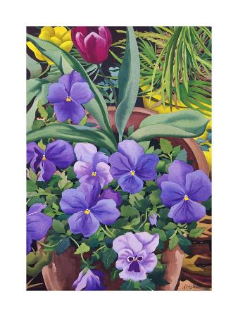 christopher-ryland-flowerpots-with-pansies-2007