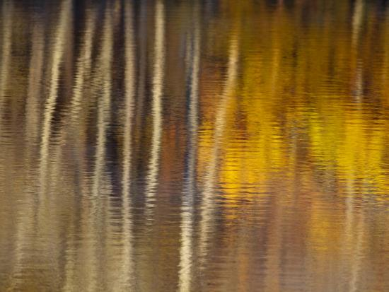 chuck-haney-autumn-colors-reflect-in-the-calm-water-of-price-lake-blue-ridge-parkway-north-carolina-usa