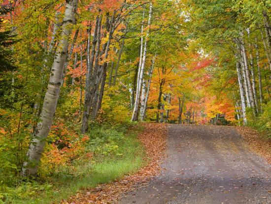 chuck-haney-colorful-autumn-trees-keweenaw-penninsula-michigan-usa