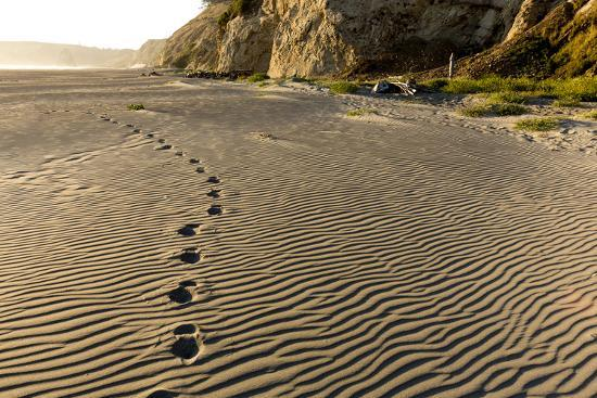 chuck-haney-foot-prints-in-the-sand-patterns-on-the-beach-cape-blanco-sp-oregon