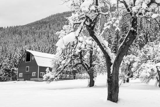 chuck-haney-fresh-snow-on-red-barn-near-salmo-british-columbia-canada