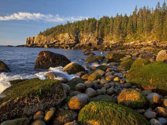 chuck-haney-polished-rocks-at-otter-cliffs-acadia-national-park-maine-usa