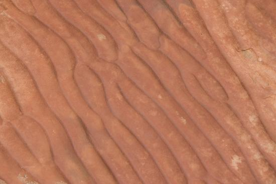 cindy-miller-hopkins-australia-watarrka-national-park-kings-canyon-rim-walk-detail-of-carved-stone-sea-ripples