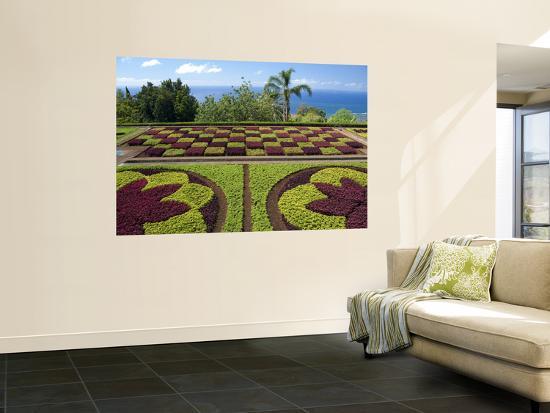 cindy-miller-hopkins-botanical-gardens-funchal-madeira-island-portugal