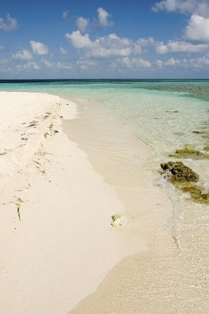 cindy-miller-hopkins-sandy-beachfront-view-goff-caye-belize