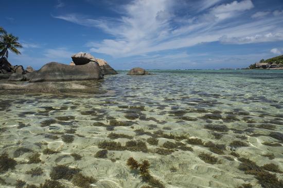 cindy-miller-hopkins-seychelles-mahe-st-anne-marine-np-view-of-moyenne-island