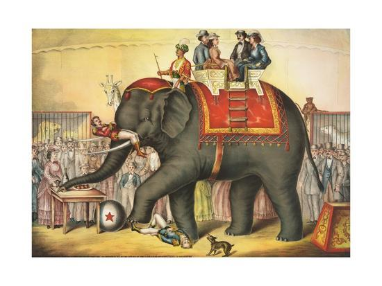 circus-elephant-and-riders