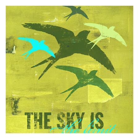 cj-elliott-the-sky-is-the-limit-2
