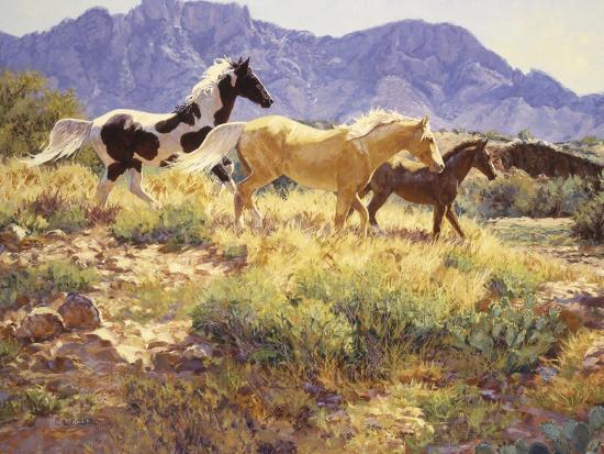 claire-goldrick-horses-at-big-wash
