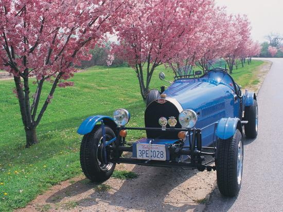 claire-rydell-bugatti-racecar-and-cherry-blossoms