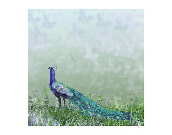 claire-westwood-peacock-garden