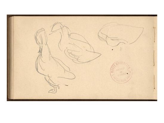 claude-monet-study-of-ducks-pencil-on-paper