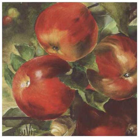 clauva-pommes