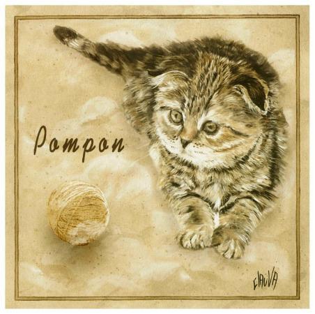clauva-pompon