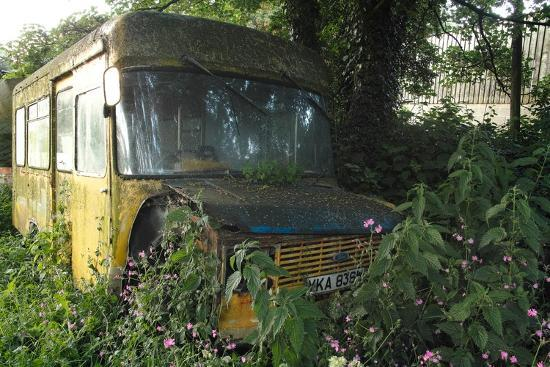 clive-nolan-old-bus-in-woodland