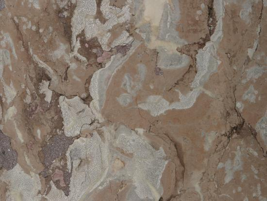 close-up-of-a-mottled-marble-surface