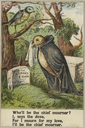 cock-robin