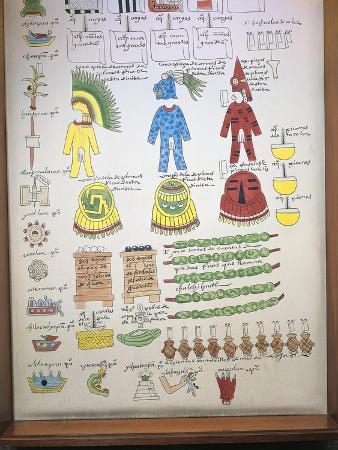 codex-mendoza-reproduction-of-page-with-illustration-of-taxes-paid-to-aztec-rulers