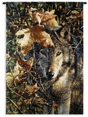 collin-bogle-autumn-eyes