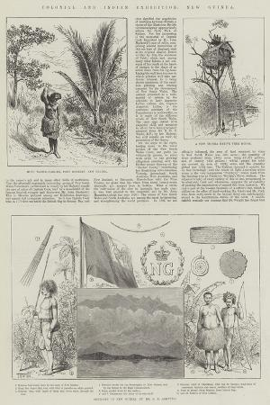 colonial-and-indian-exhibition-new-guinea