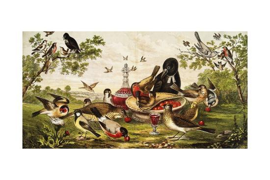 color-print-of-birds-feasting-on-a-fruit-pie