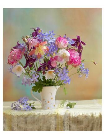 colorful-flower-stilllife