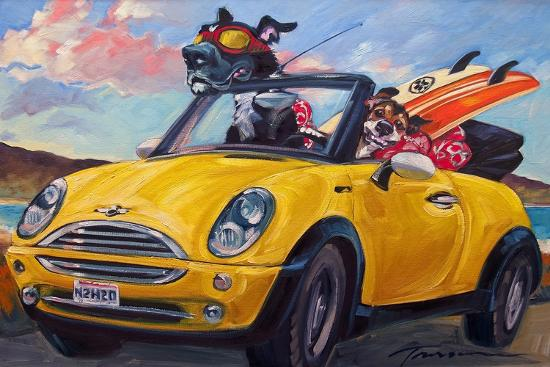 connie-r-townsend-sunup-surfdogs
