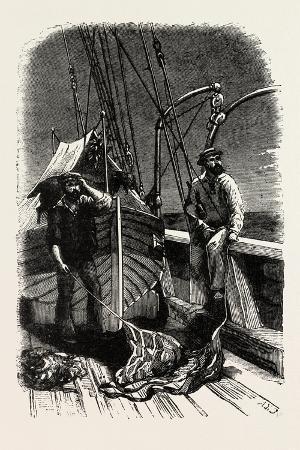 conversation-at-sea-vessel-sailor-sailors-maritime