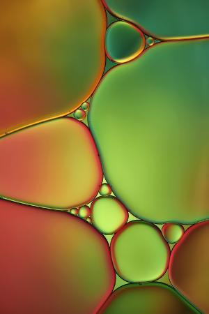 cora-niele-stained-glass-ii