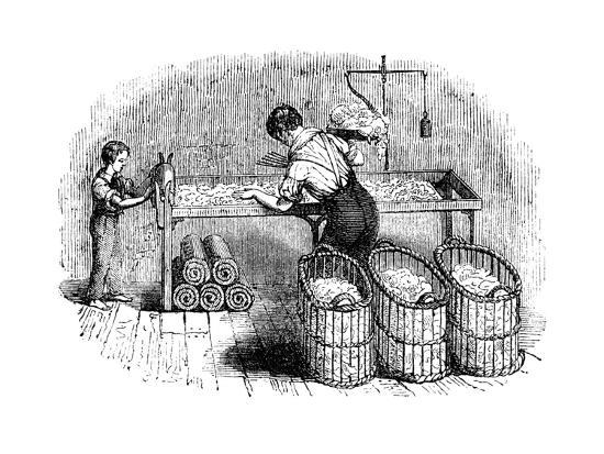cotton-manufacture-c1845