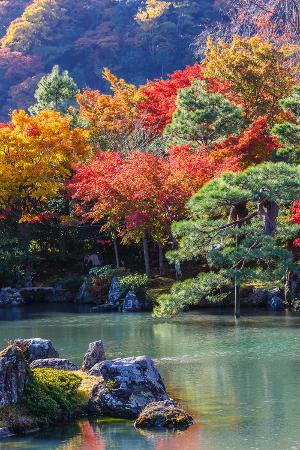 coward-lion-tenryu-ji-s-sogen-ji-garden-in-kyoto
