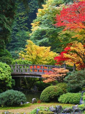 craig-tuttle-bridge-in-japanese-garden